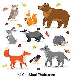 세트, 동물, 삼림지, 고립된, 삽화, 숲, 벡터