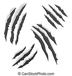 세트, 의, 검정, 집게발, 은 긁는다, 고립된, 백색 위에서, 배경., 삽화