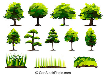 세트, 의, 나무