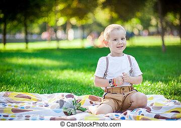 소년, 와, 장난감, 공원안에