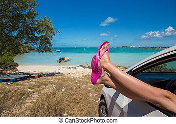 손가락으로 튀김 툭 떨어뜨림, 에서, 그만큼, 창문, 의, a, 차, 배경에, 열대 바닷가