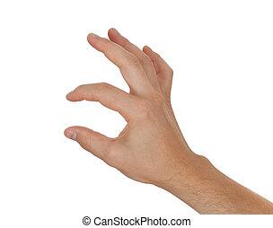 손 보유, 또는, 전시, 무엇인가, 얇은, 타당한 것