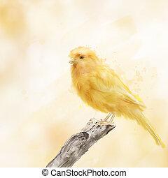 수채화 물감, 새, 황색