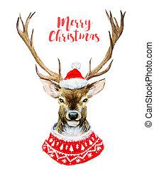 수채화 물감, 크리스마스, 사슴