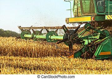 수확자를 결합해라, 에서, 농업 들판, closeup.