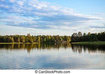 숲, 반영하는, 에서, 호수