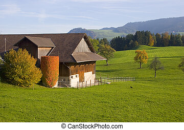 스위스어, 농장, vi