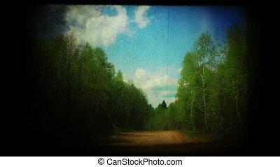 시골길, 포도 수확, 장면이다