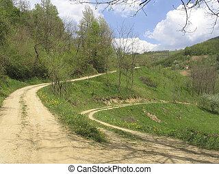 시골의 길