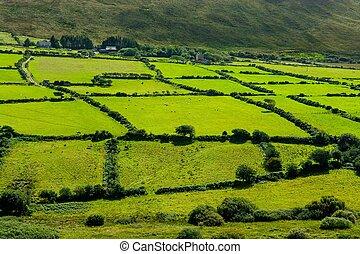 시골의 풍경, 에서, 아일랜드