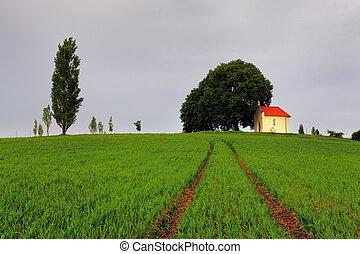 시골, 목초지, 채플
