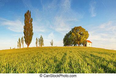 시골, 봄, 슬로바키아 공화국
