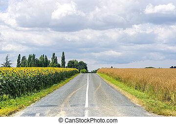 시골, 에서, 부르고뉴