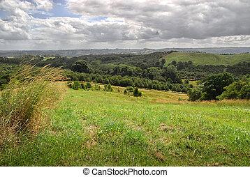 시골, 오스트레일리아 사람