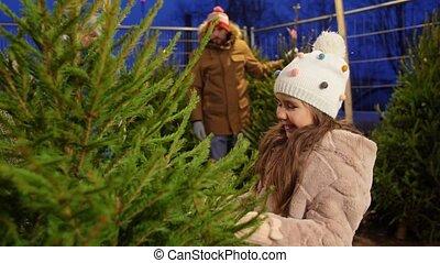 시장, 구입, 나무, 가족, 행복한 크리스마스