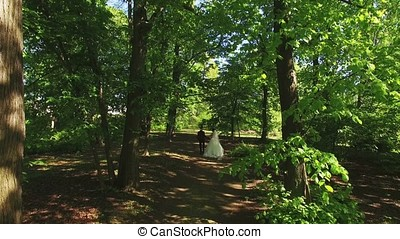 신부와 신랑, 걷기, 에서, a, 공원