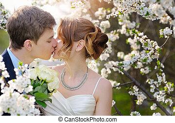 신부와 신랑, 에, 그만큼, 결혼식, 키스, 에서, 봄, 걷다, 공원