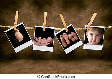 신생아, 유아, 폴라로이드, 로프, 사진, 발사, 매다는 데 쓰는, 임신, clothespins
