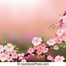 신선한 꽃, 아름다움