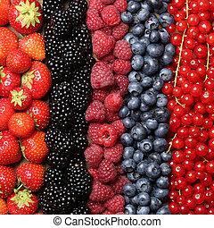 신선한, 장과, 배경, 과일