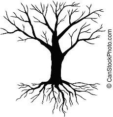 실루엣, 나무, 없이, 잎