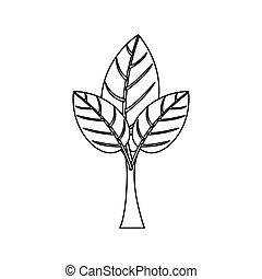 실루엣, 나무, 와, 잎이 많은, 은 분기한다