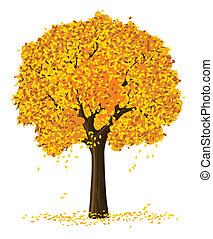실루엣, 의, 가을, 계절, 황색, 나무