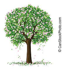 실루엣, 의, 봄의 계절, 나무