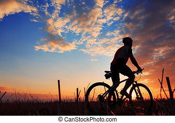 실루엣, 의, a, 자전거 타는 사람, 와..., 자전거, 통하고 있는, 일몰, 배경.