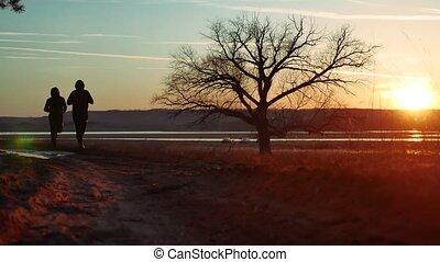 실루엣, 2명의 남자, 도로에, 에, 일몰, 혼자 서는, 나무, silhouette., 운동, 청년,...