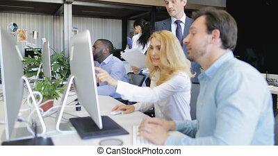 실업가, 논의하다, 보고서, 컴퓨터에 앉는 것, 책상, 에서, 현대, 창조, 사무실, 함께, 실업가, 팀...