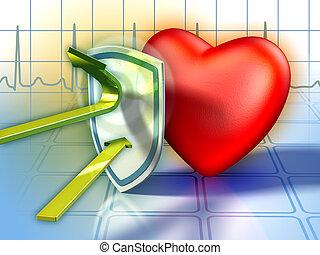 심장, 방위