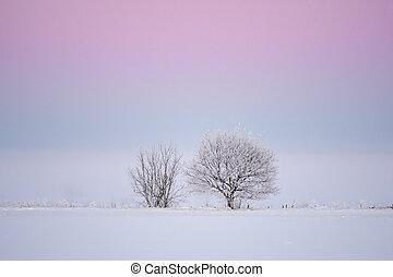심홍색, 빛