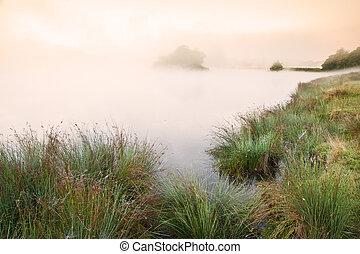 아름다운, 가을, 가을, 조경술을 써서 녹화하다, 위의, 안개가 지욱한, 봄 안개가 덮인, 호수, wih, glowin