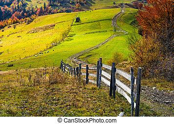 아름다운, 가을, 시골, 장면, 깊다