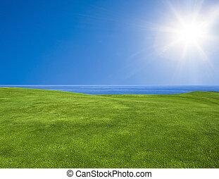 아름다운, 녹색의 풍경