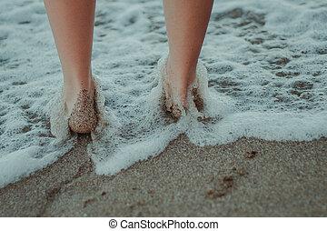 아름다운, 다리, 모래에, 의, 그만큼, 바다, 바닷가