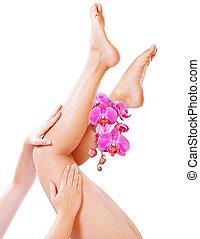 아름다운, 다리, 와, 분홍색 난초