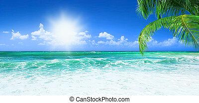 아름다운, 바닷가