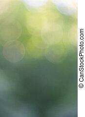 아름다운, 배치, 떼어내다, 황색, 창조, bokeh, circles., 녹색의 배경