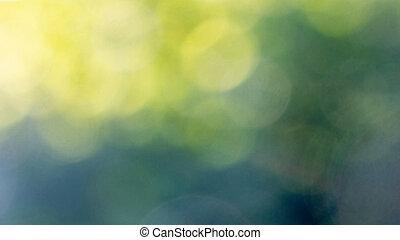 아름다운, 배치, 떼어내다, 황색, 희미해지는, 배경., bokeh, 녹색
