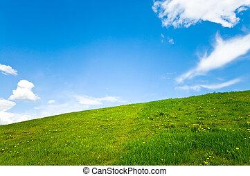 아름다운, 봄, 조경술을 써서 녹화하다