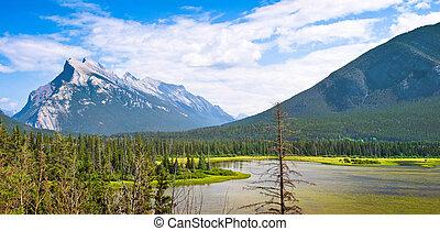 아름다운, 산, 바위가 많은, 국립 공원, 벽옥, alberta, 캐나다, 조경술을 써서 녹화하다