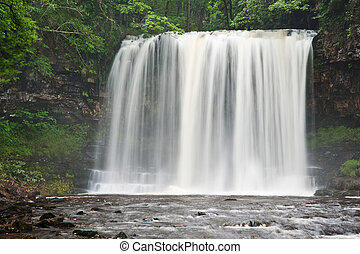 아름다운, 삼림지, 시내, 와..., 폭포, 에서, 여름
