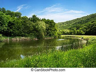 아름다운, 시골, 장면