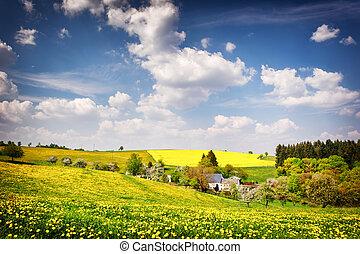 아름다운, 시골, 조경술을 써서 녹화하다