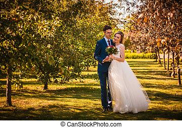 아름다운, 유행, 신부와 신랑, 통하고 있는, 정원, 배경