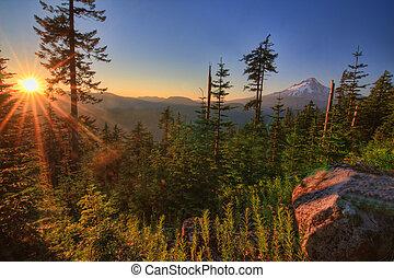 아름다운, 전망, usa., 산, 오레곤, 두건