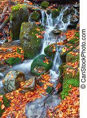 아름다운, 폭포, 에, 산, 강, 에서, 다채로운, 가을 숲, 와, 빨강, 와..., 오렌지 잎, 에, sunset.