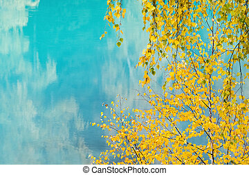 아름다운, 호수 물, 에서, 가을